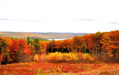 Top Five: Local places to experience fall