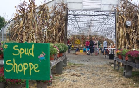 Potato Fest unearths a community of produce lovers