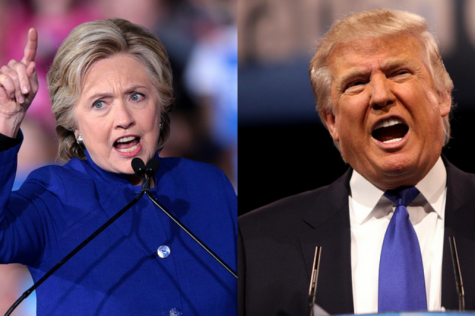 Emotions got the best of us this election, psychology professor says