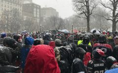 Thousands line snowy Boston streets for Patriots parade
