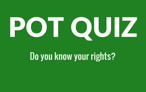 QUIZ: Do you know your marijuana rights in Massachusetts?