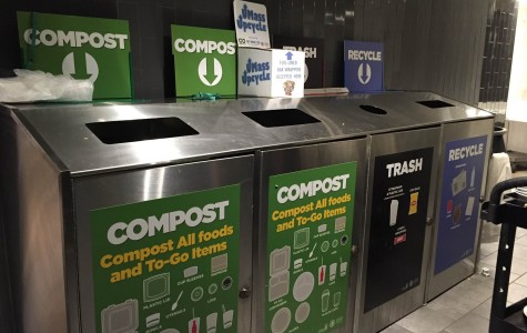 Top Five: Ways to reduce your carbon footprint on campus