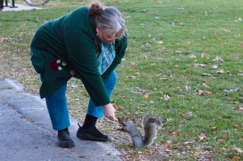 Sue Dreyer feeds a squirrel by the Student Union directly from her hands. (Caeli Chesin/Amherst Wire)