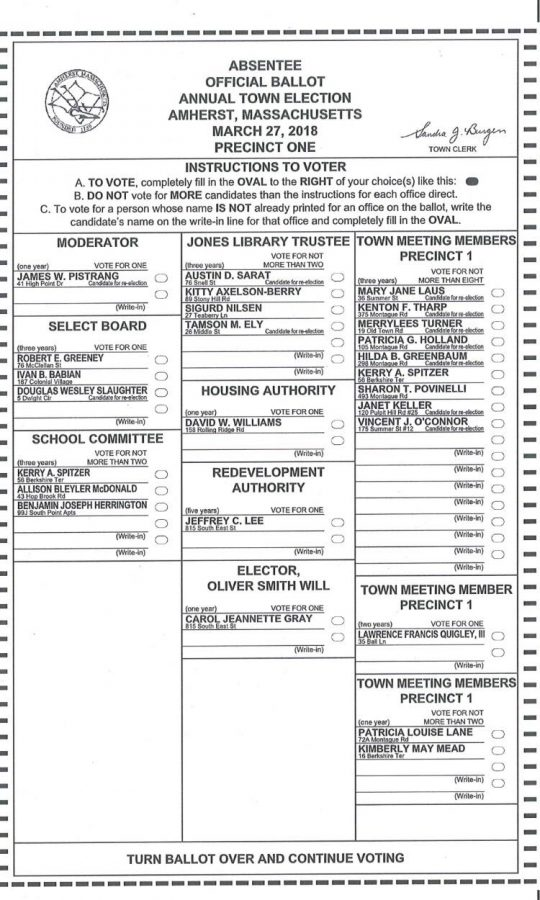 March 27th ballot for Amherst Town Election