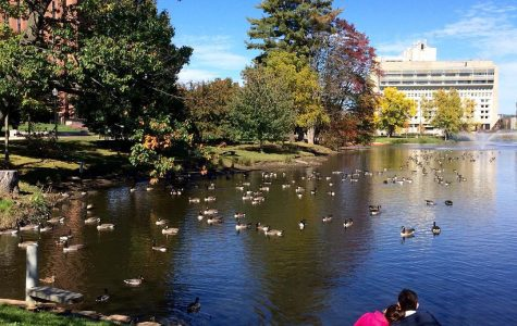 Top five: Cute date spots at UMass