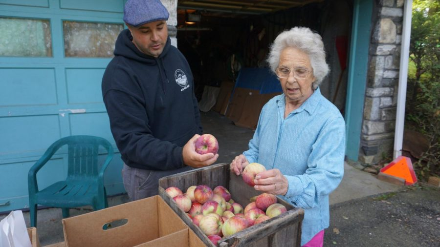 Kyle Kielbasa and his grandmother grade apples.