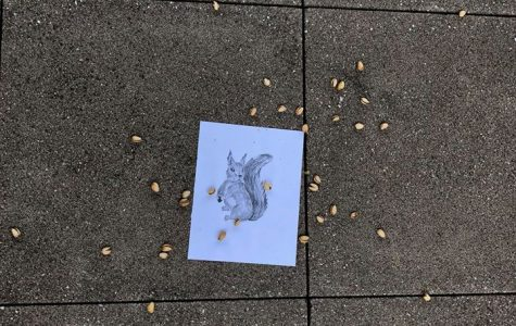 Students mourn the FAC's black squirrel
