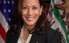 Is Kamala Harris the new face of the Democratic party?