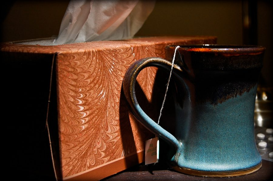 (Ryan Hyde/ Wikimedia Commons)