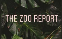 The Zoo Report: Jonathan Kermah on being co-editor in chief of Amherst Wire