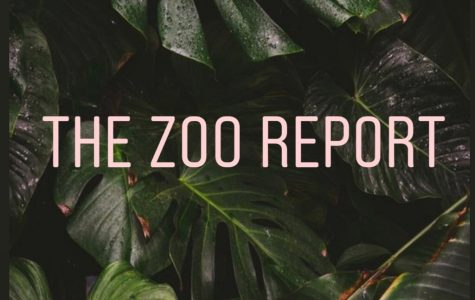The Zoo Report: Flynn Krankowsi on Active Minds and mental health