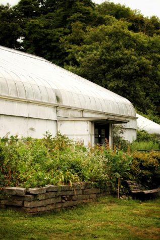 Durfee Conservatory (Astghik Dion/Amherst Wire)