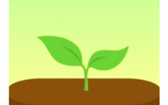 App of the week for college students: Forest App – Stay Focused