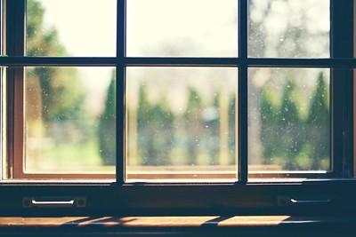 (DavioTheOne / Flickr)