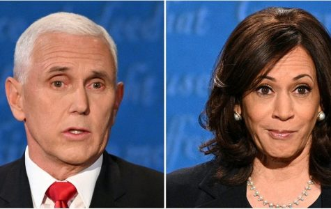 Vice Presidential Debate Recap: The good, the dull and the fly