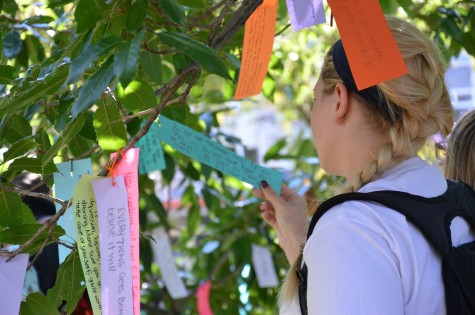 The Stigma Tree sends messages of hope